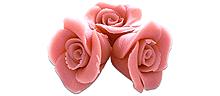 Roze rozen 12 stuks