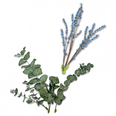 Gedroogde bloemen eucalyptus en lavendel lila-blauw