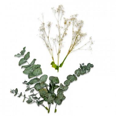 Gedroogde bloemen taartdecoratie - eucalyptus en gipskruid
